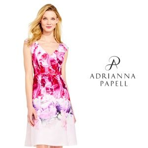 Adrianna Papell ombre peony fit and flare dress 8